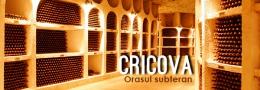 Cricova - Подземный город