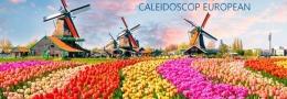 Европейский Калейдоскоп Benelux 2020